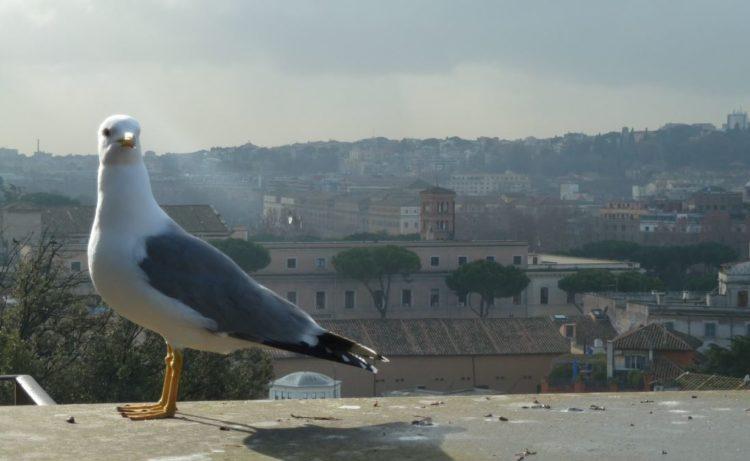 lugares interesantes de roma